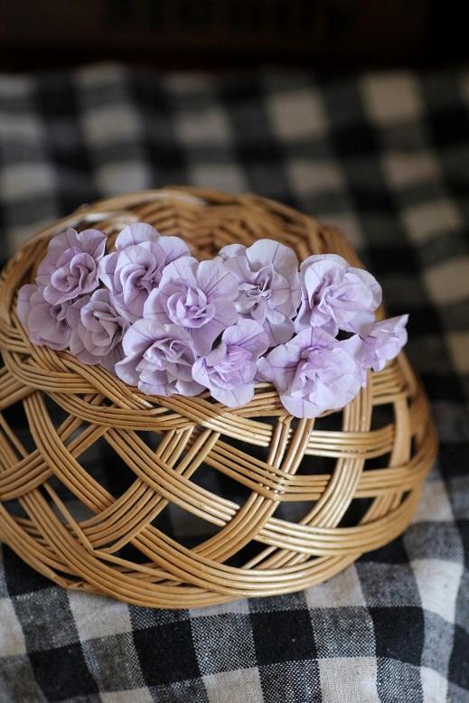 画像3: 2016NEW!! 八重咲きカリブラコア 『ペティ アイスバーグ』 *11センチポット