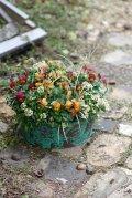 冬から春を楽しむ寄せ植え『小輪ビオラ テラコッタ』