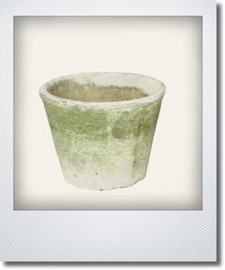画像1: アンティークホワイトカクタスポット16cm