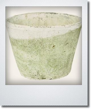画像1: アンティークホワイトカクタスポット25cm