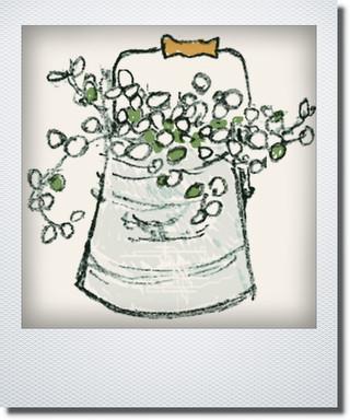 画像1: カラスバ寄せ植え