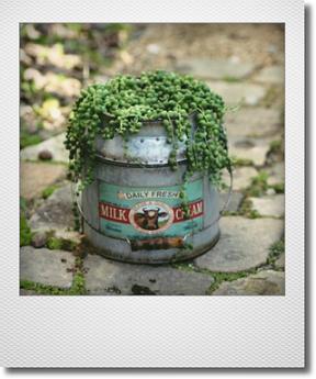 画像1: ミルク缶にグリーンネックレス