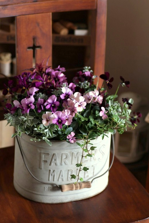 画像4: 冬の寄せ植え『パピヨンがいっぱい』